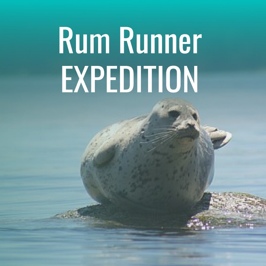 Product-RumRunner